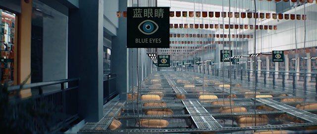 Blue-Eyed Me sw ss3 krk