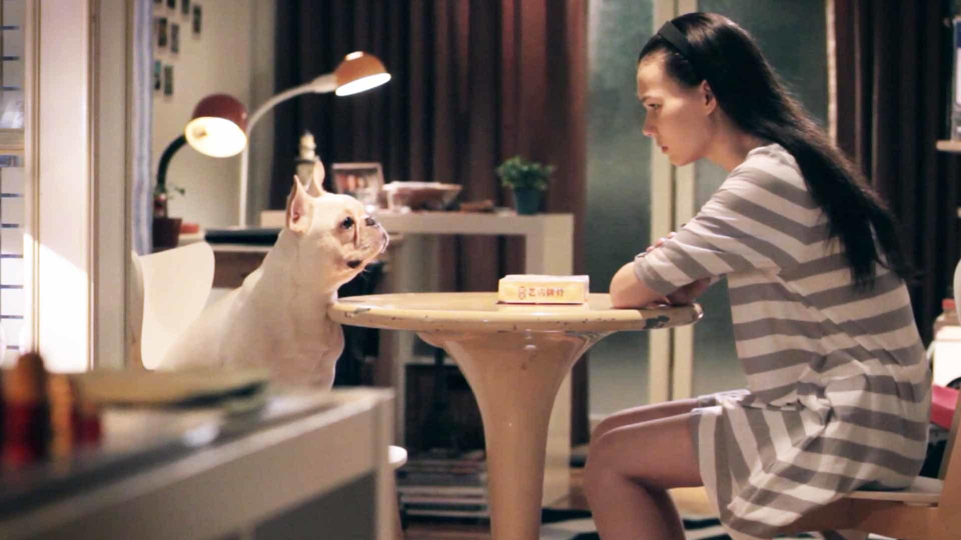 He's A Dog In My House (我的狗男友) by Shih-Han TSAO - Taiwan Comedy, Drama Short Film