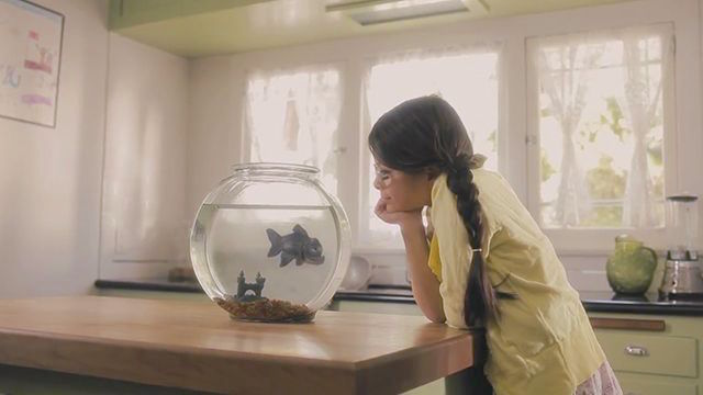 Fish-Friend-ss1-krk